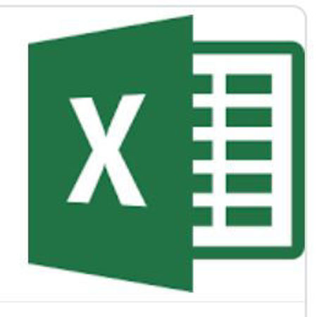 分類圖片 EXCEL ADVANCED SKILLS