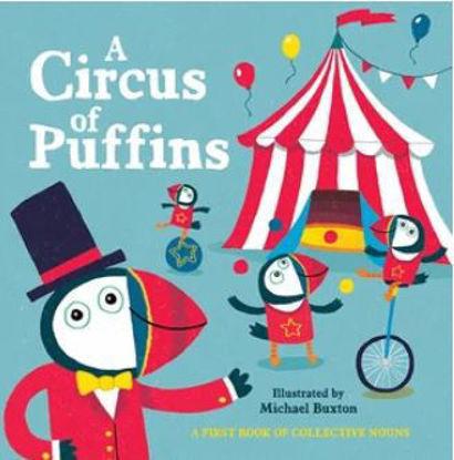 圖片 A Circus of Puffins