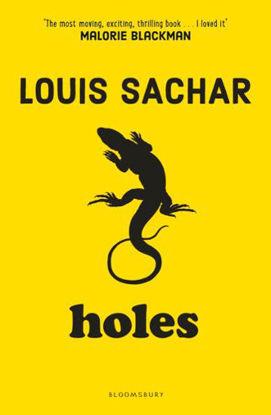 图片 Holes Louis Sachar