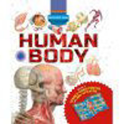 Picture of Discovery Pack: Human Body