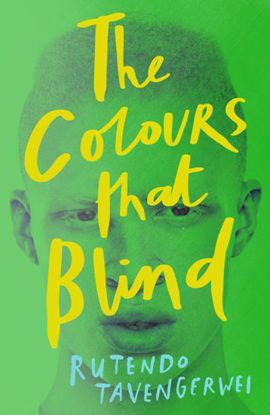 Picture of The Colours That Blind