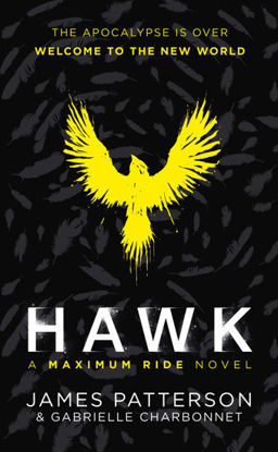 Picture of Hawk: A Maximum Ride Novel