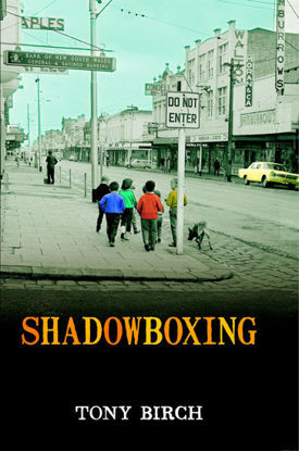 Picture of Shadowboxing
