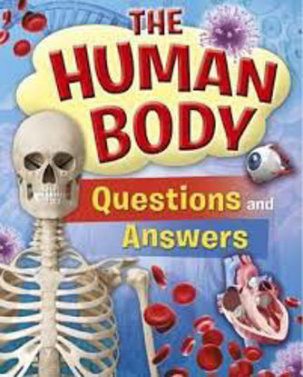 Picture of Human Body Questions and Answers