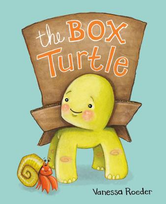图片 The Box Turtle