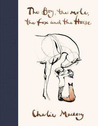 图片 The Boy, The Mole, The Fox and The Horse