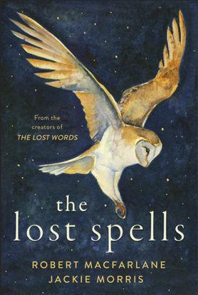 图片 The Lost Spells