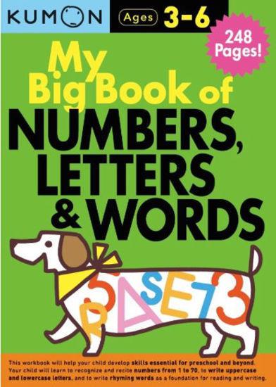图片 My Big Book of Numbers, Letters and Words Bind Up