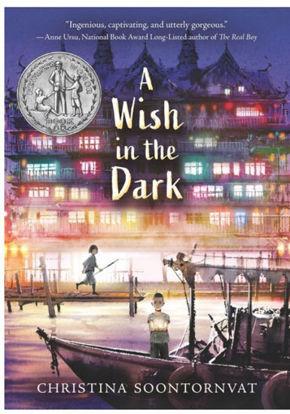 图片 A Wish in the Dark (Newbery Honor 2021)