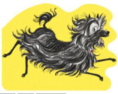 图片 All About Hairy Maclary