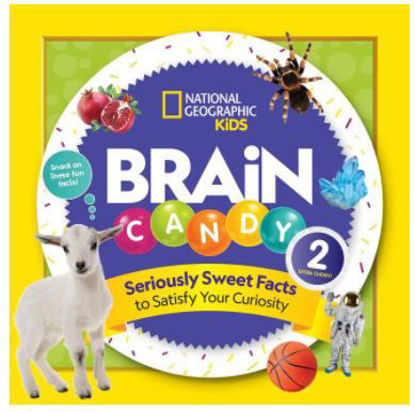 Picture of Brain Candy 2