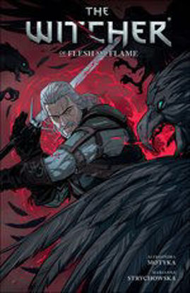 Picture of The Witcher Volume 4: Of Flesh and Flame