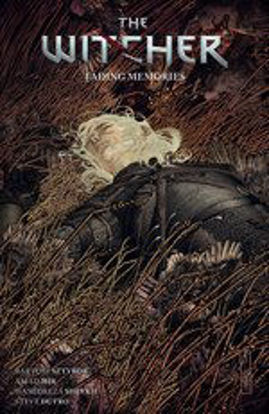 Picture of The Witcher Volume 5: Fading Memories