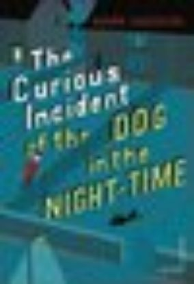 Picture of The Curious Incident of the Dog in the Night-time